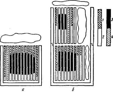 схема двухкорпусных ульев.